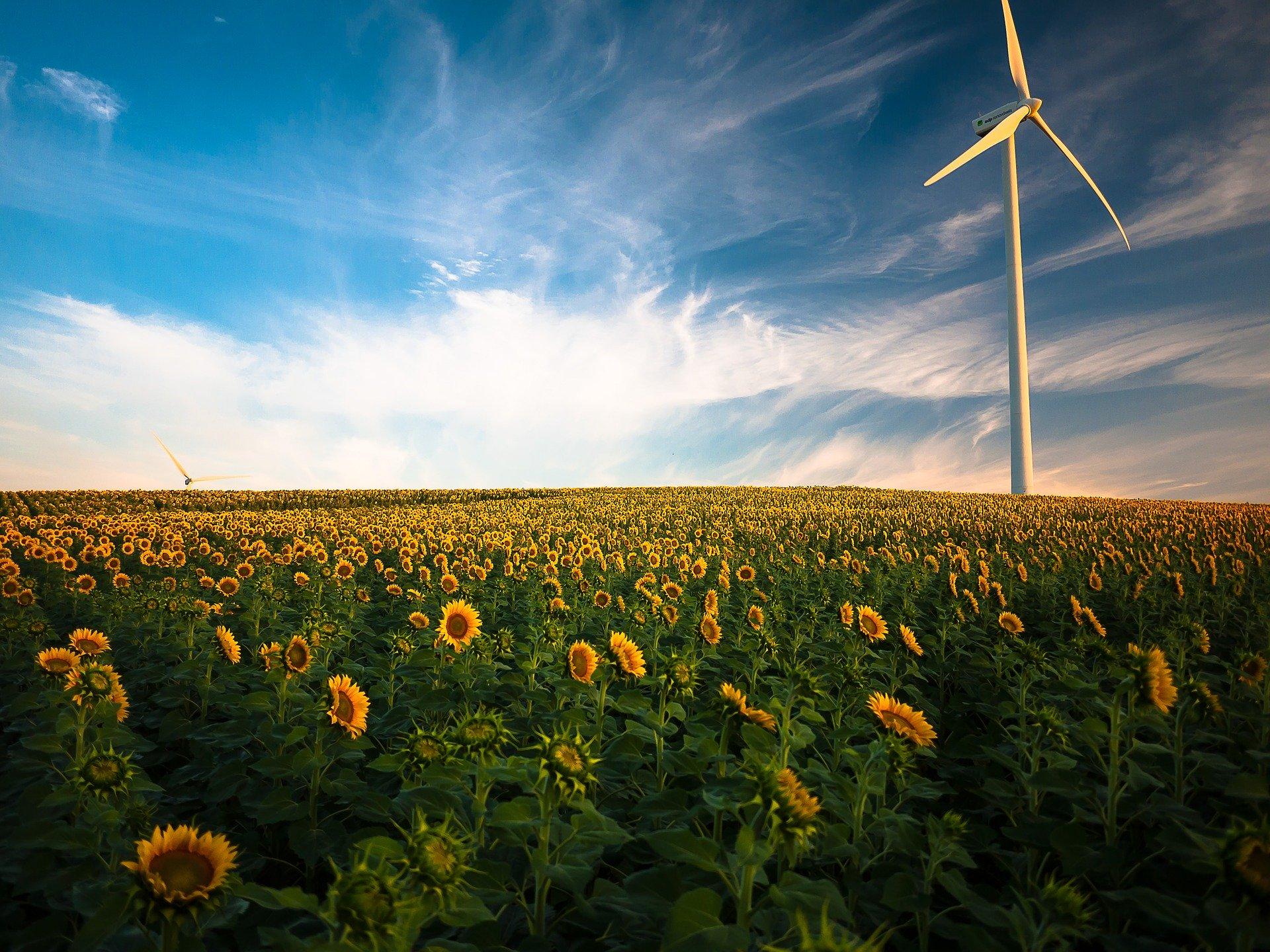 Emissioni Zero con le Energie Rinnovabili